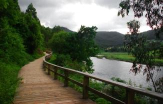 Paseo fluvial do Landro